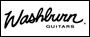 washburn gitary, wzmacniacze